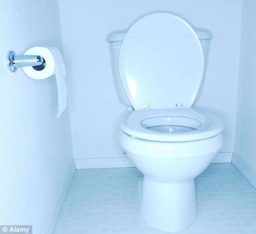 Bồn cầu là một trong hai nơi tích tụ nhiều vi khuẩn nhất trong phòng tắm, vì thế giữ vệ sinh cho thiết bị này một điều vô cùng quan trọng.