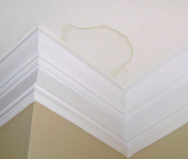 Cách chống thấm trần nhà bê tông